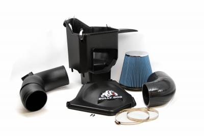 Air Intakes And Parts - Cold Air Intakes - Bully Dog - Bully Dog Rapid Flow Intake, enclosed, Molded XLPE, Stage 2 52102