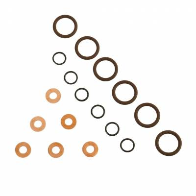 Fuel System - Injector Lines And Replacement Parts - BD Diesel - BD Diesel ISB Injector Seal Kit - Dodge 1998.5-2002 5.9L 24-valve 1075800